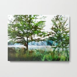 tinted meadow Metal Print