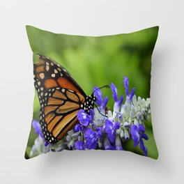 Delightful Obsession Throw Pillow