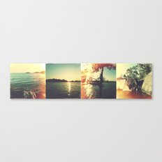 Swedish summer Canvas Print