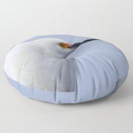 Modeling Assignment Floor Pillow