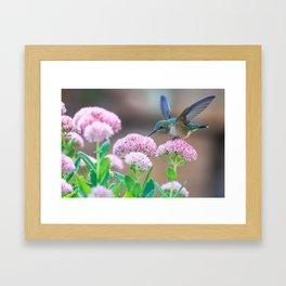 hummingbird #society6 #decor #buyart Framed Art Print