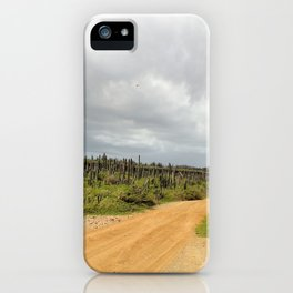 Grey Clouds over Bonaire Island in the Caribbean iPhone Case