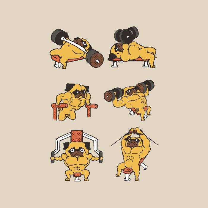 Chest Day with The Pug Comforters