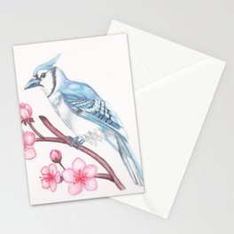 Blue Jay Stationery Cards