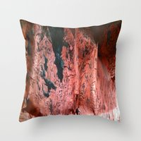 geology Throw Pillows featuring Copper Sheet by Crayle Vanest