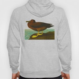 Dusky Albatros John James Audubon Vintage Illustration Birds of America Hoody
