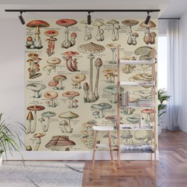 Trippy Vintage Mushroom Chart // Champignons by Adolphe Millot XL 19th Century Science Artwork Wall Mural