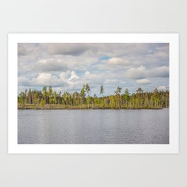 Forest in Finland Art Print