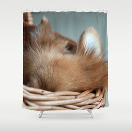 Ears Shower Curtain