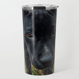 Doggy in the Field // Natural Filter Hiking by Rustic Abandoned Log Cabin Summit Colorado Travel Mug