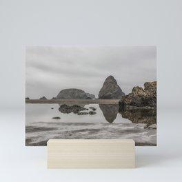 Whaleshead Beach Mini Art Print