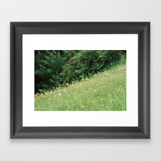 Wildflowers 2 Framed Art Print