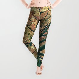 The big strong tree Leggings