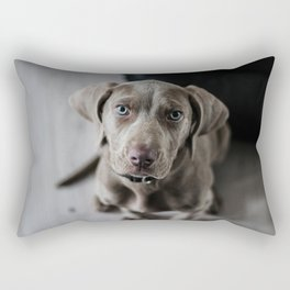 Weimaraner puppy looking sweet Rectangular Pillow