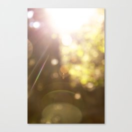 Sunspots Canvas Print