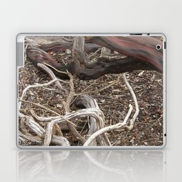 TEXTURES - Manzanita in Drought Conditions #3 Laptop & iPad Skin