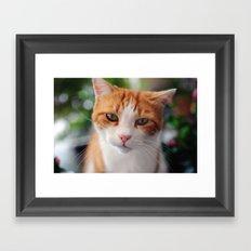 Garfield - a red cat Framed Art Print
