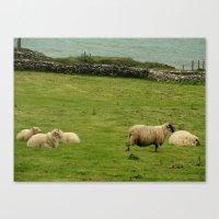 ruben ireland Canvas Prints featuring Ireland by Daniel Clifford