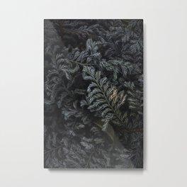 Moody Nature Textures  Metal Print