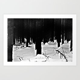 Forest Dark VIII Art Print