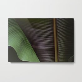 Palm - Over & Under Metal Print