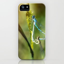 Two Dragonfly insect mating perched on stem of weed iPhone Case