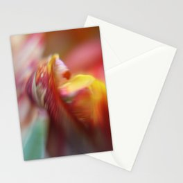 Tulip Bokeh Stationery Cards