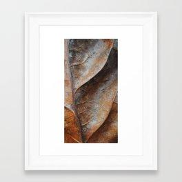 Up Close Framed Art Print
