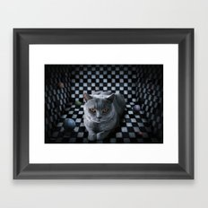 Diesel in the box Framed Art Print