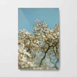 Stand In The Sun Metal Print