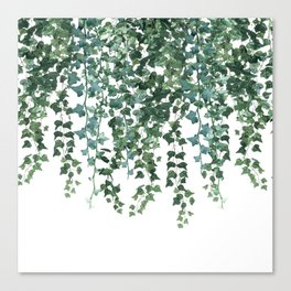 Ivy Vine Drop Canvas Print