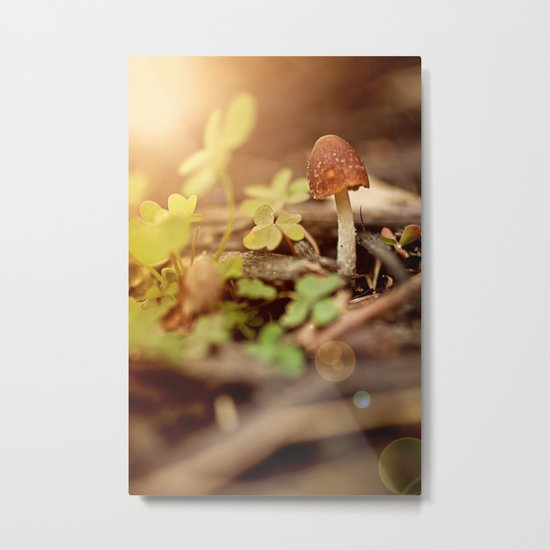 """I am...a mushroom on whom the dew of heaven drops now and then"" --John Ford Metal Print"