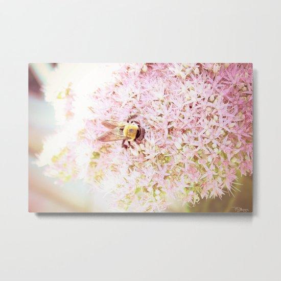 Nature of a Bee Metal Print
