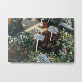 Columbia Road Flower Market, London Metal Print