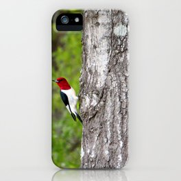 Red-headed Woodpecker iPhone Case