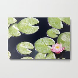 Lily Pads of Joy Metal Print