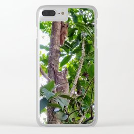Flying Lemur Couple Clear iPhone Case