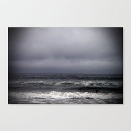 gray on gray Canvas Print