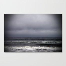 gray on gray Canvas Print