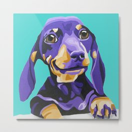 Purple Dachshund Pet Portrait on Turquoise Metal Print