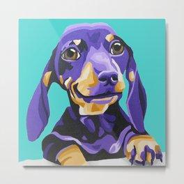 Purple Dachshund Pet Portrait on Turquoise Metal Print