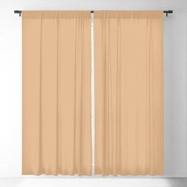 DESERT MIST pastel solid color  Blackout Curtain