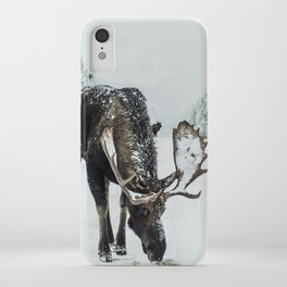 Moose in the wild iPhone Case