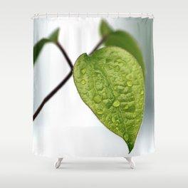 Raindrop Leaves Shower Curtain