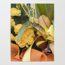 begonia flower in bouquet Poster