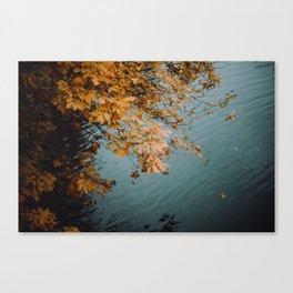 Autumn Copper + Teal Canvas Print