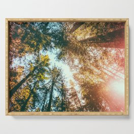 California Redwoods Sun-rays and Sky Serving Tray