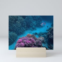Tropical Fish Coral Sea Mini Art Print