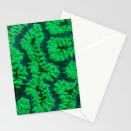 Fluorescent coral Stationery Cards