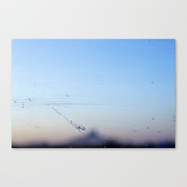 Road Trip Casualties Canvas Print